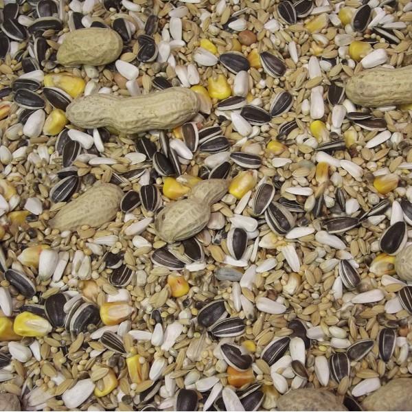 M lange perroquet au kg graines oiseaux i c montant - Graines de tournesol pour oiseaux ...